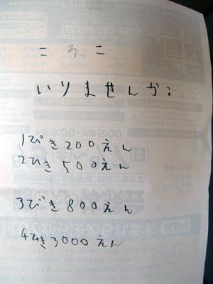 0508 Koneko